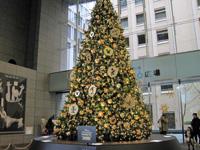2014年のオアゾのクリスマスツリー