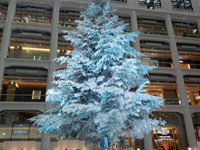2014年のJPタワーのクリスマスツリー